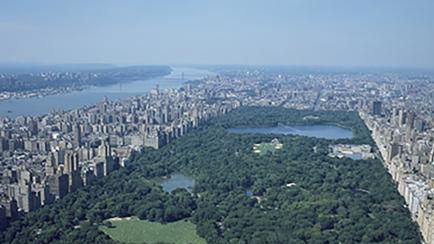 Central Park NYC Aerial View