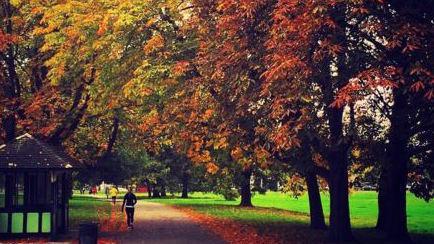 Brockwell Park fall colors